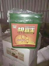 河南安阳旺润生根养根冲施肥料,壮根冲施肥批发厂子,抗病生根菌剂图片