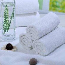 厂家直供大型浴场白毛巾不掉毛