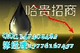 哈尔滨贵金属招商,加盟新华原油柚子代理加盟