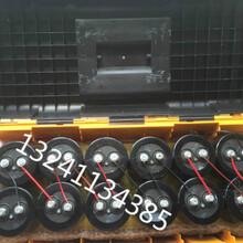 十堰电捕野猪机器批发电瓶打野猪机器图片