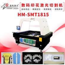 自动视觉定位摄像头激光切割机高效率高精度布料激光切割机图片