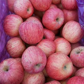 福建红富士苹果价格龙岩苹果价格宁德红富士苹果价格福州苹果批发基地图片3