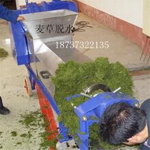 生姜、白菜、萝卜榨汁压榨机小型不锈钢螺旋压榨机YZJ系列压榨机图片