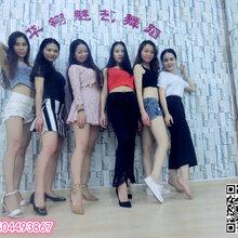 龙岗民族舞成人培训班龙西舞蹈培训