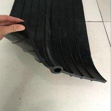 成都止水带厂家塑料止水带批发四川泰升蓝图片