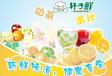 上海五谷养生粗粮饮品技术培训/正宗好喝的奶茶技术培训
