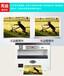 美爾印多功能數碼印刷機可小批量印積分卡代金券優惠券