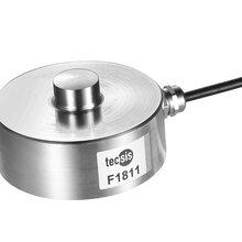 东莞中昊代理的称重传感器F9804