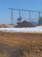 通化陶粒廠家,鑫瑞陶粒廠,就近發貨,廠價直銷圖片