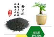 绿色有机肥,绿色环保有机肥,绿色高效有机肥
