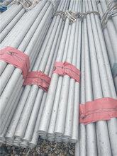 温州不锈钢管生产厂家供应06cr19ni10无缝不锈钢方管价格行情走势图片