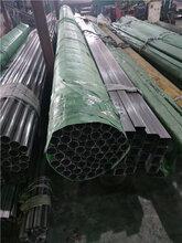 DN15304高压不锈钢管SCH80S厂家