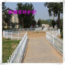 扬州草坪护栏围墙护栏生产厂家定做实惠图片