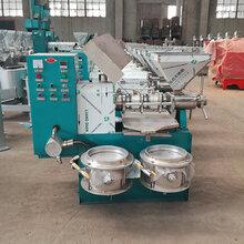 梅州100型山茶籽榨油机设备厂家