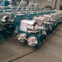 125型全自动螺旋榨油机厂家