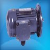 CPG電機