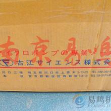 日本Furue-pump古江科學循環泵RP-CF4AC100V原裝圖片