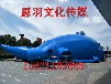鲸鱼气膜出租出售大型鲸鱼岛出租出售