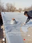 供应河北标盈石家庄厂家河北省环氧树脂食品级酸菜池内壁防腐防水涂料图片
