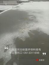 供应石家庄市河北标盈环氧树脂酸菜池食品级防水涂料图片