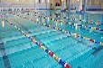 河北标盈供应大连市环氧树脂游泳池专用涂料
