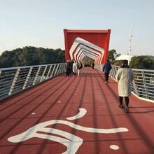 生产厂家供应山东省莱芜市高铁桥加固胶,图片