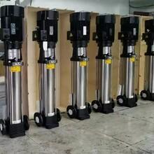 CDL(QDL)不锈钢多级离心泵-安徽勃莱特泵业有限公司