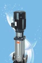 QDL热水型立式多级离心泵,厂家直销