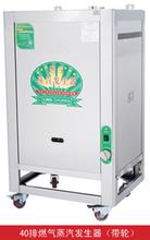 成都节能电蒸汽发生器