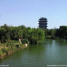 代理资质代理上海建筑企业资质