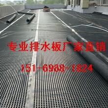 小区车库顶板排水板洛阳车库绿化滤水板