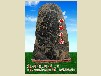 山东泰山园林石