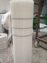 外墙保温网格布生产优质网格布外墙保温网格布80克耐碱网格布图片