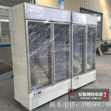 佳伯立式冷冻保鲜柜立式保鲜柜食品保鲜柜图片