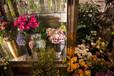 定?#21697;?#20919;鲜花柜花店专用展示柜豪华型两门展示柜鲜花保鲜柜