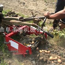 专业小型土豆收获机农业小型收获机大型全自动低破损拖拉机牵引农用土豆收获机