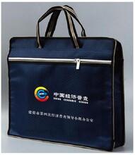 贵州经济普查手提袋普查文件袋牛津布资料袋厂家直销图片