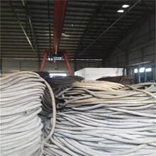 回收廢電纜回收站臺州每米價格圖片