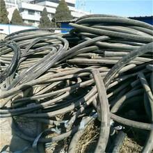 福州電纜線回收一噸價格圖片
