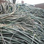 盐城旧电缆回收-配电室电缆回收(今日)高价图片5