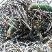 太原銅電纜回收一噸價格