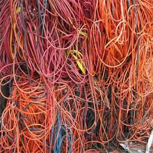 綿陽電纜回收(今日)高價圖片
