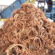 思茅電纜回收量大價格高圖片