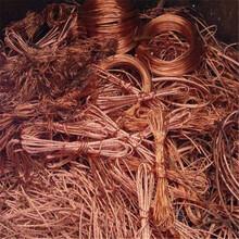 信陽銅電纜回收本月價格上調圖片