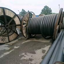 玉溪廢電纜回收量大價格高圖片