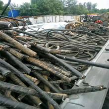 開封廢電纜回收廠家圖片
