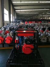 常州6寸柴油机混流泵铸铁款HS60DEP图片