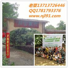 深圳农家乐深圳农庄深圳离市区最近的农家乐观澜九龙生态园