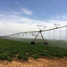 工程案例展示农业种植基地无线网桥视频监控系统