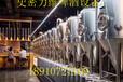 自酿啤酒设备自酿啤酒设备价格河北史密力维环保科技有限公司